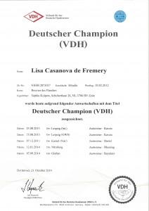 Dt Champ VDH